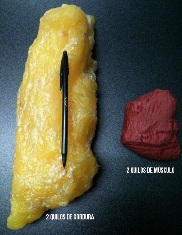 Gordura x musculo